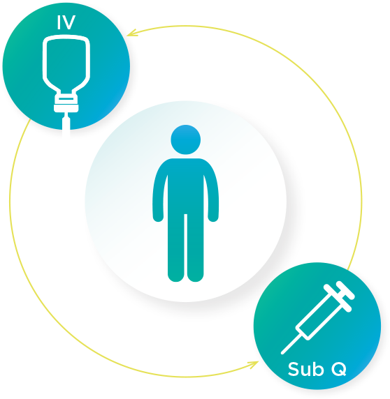 Image showing transitions between IV and Sub Q administration
